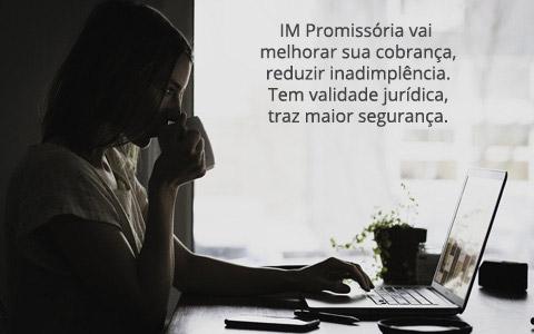 IM Promissória. Programa de Notas Promissórias. Telas modernas. Fácil de usar e controlar. Exemplo de Nota Promissória. Clique para Testar Grátis.